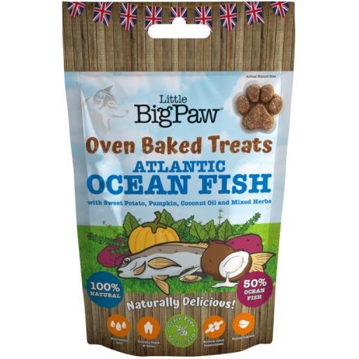 Little BigPaw Atlantic Ocean Fish Treats 130g