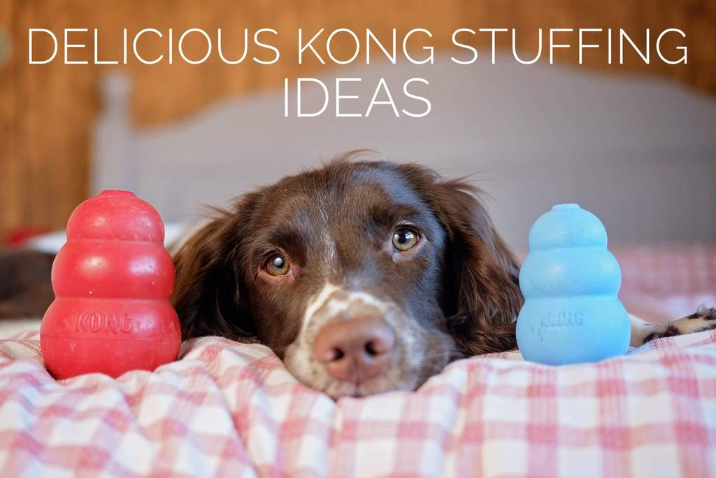 KONG Stuffing Recipes