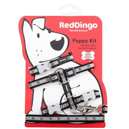 Red Dingo Puppy Kit, Bumble Bee (Collar, Lead & Harness)
