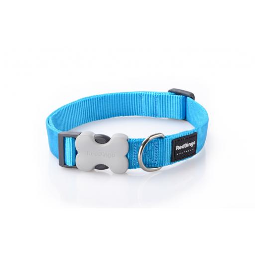 Red Dingo Dog Collar, Plain Turquoise