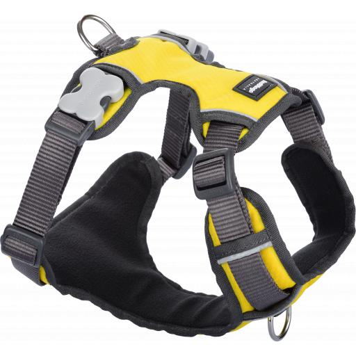 Red Dingo Padded Harness, Yellow