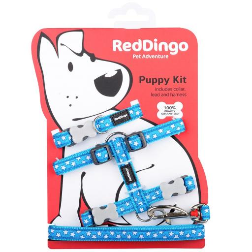 Red Dingo Puppy Kit, White Star On Turquoise (Collar, Lead & Harness)