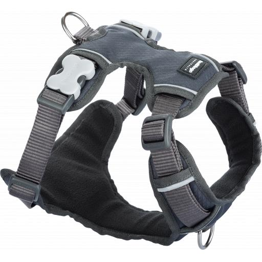 Red Dingo Padded Harness, Grey