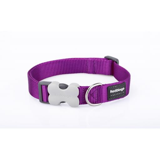 Red Dingo Dog Collar, Plain Purple