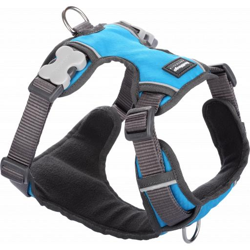 Red Dingo Padded Harness, Turquiose