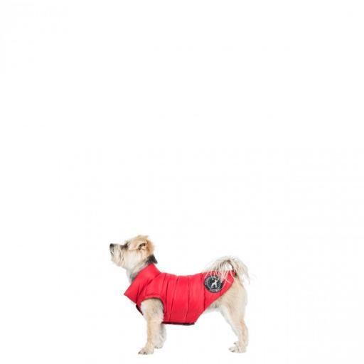 dogby-uuacpto10002-pxr-xxs02_1.jpg