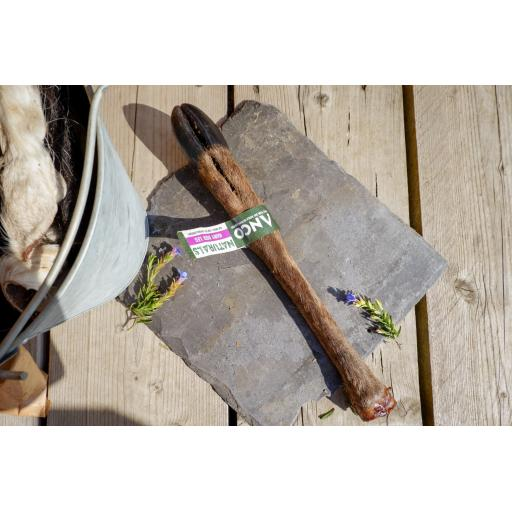 Anco Naturals Hairy Deer Leg (with hoof)