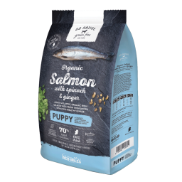 Go-Native-gain-free-dog-food-PUPPY-salmon.png