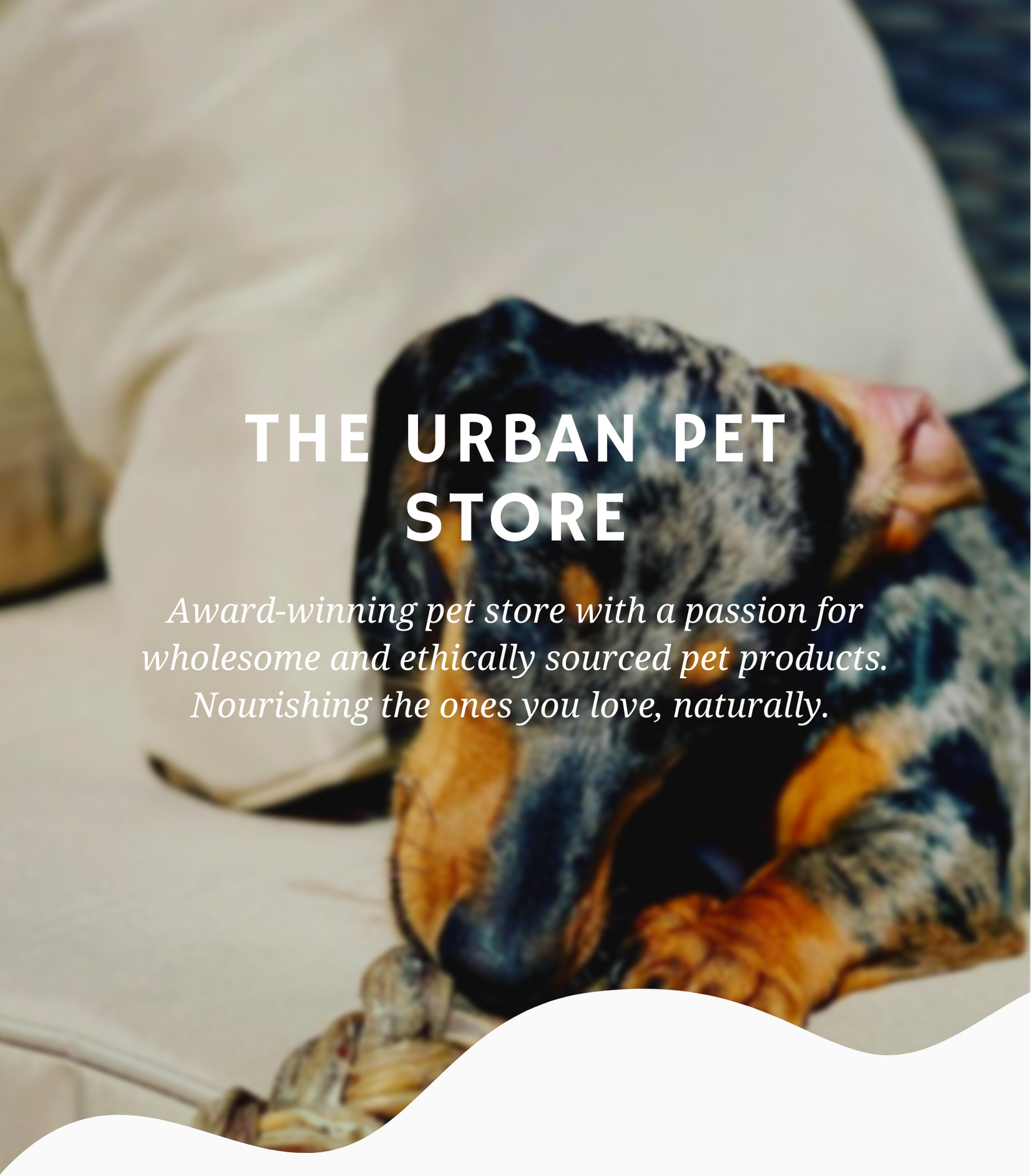 The Urban Pet Store(9).png